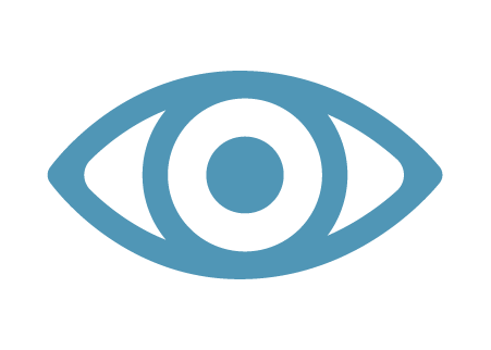 Vision Insurance Icon